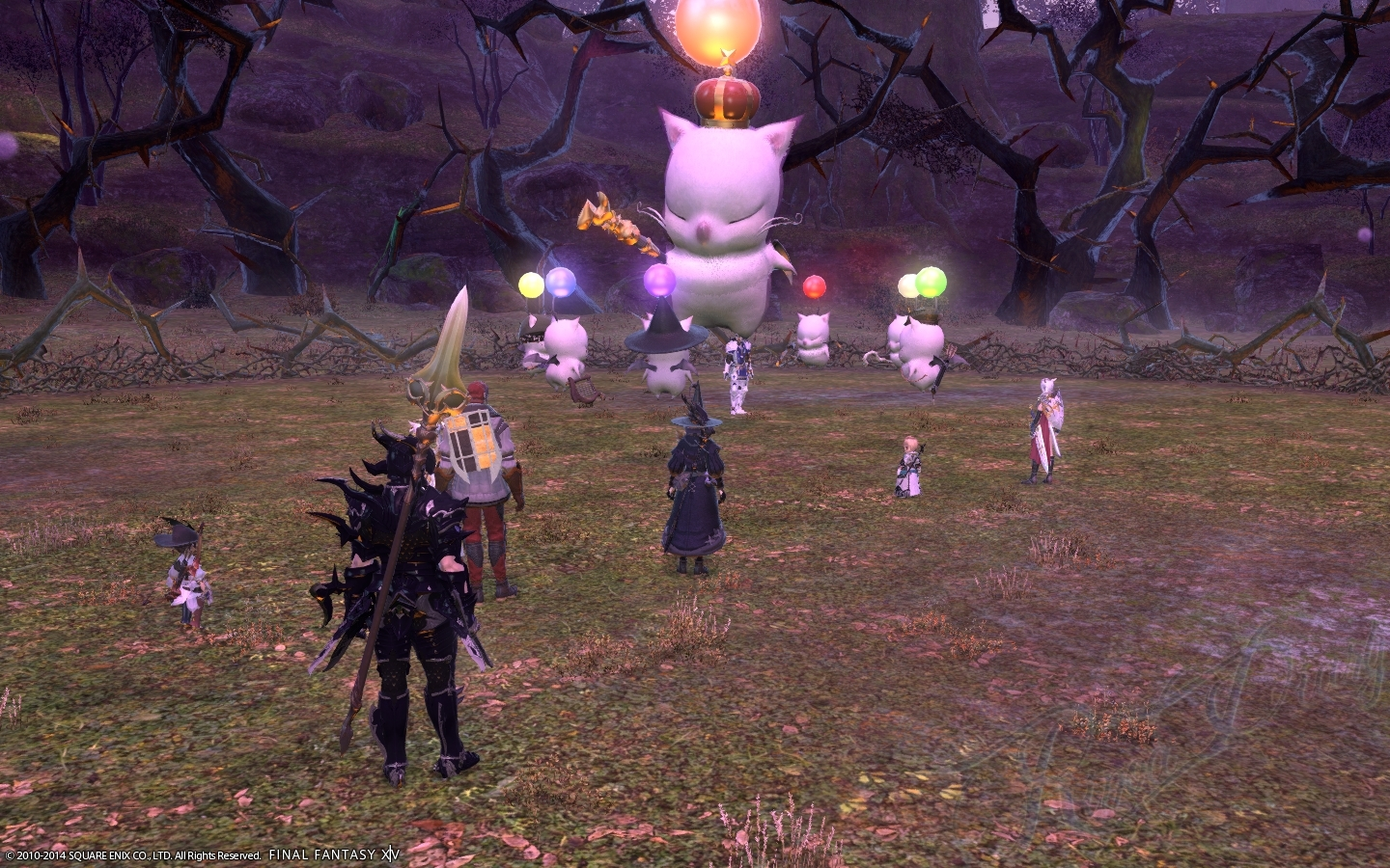 Ff14 high level duty roulette