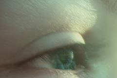 trailer-13