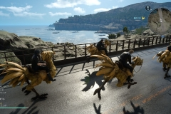 Final Fantasy XV - Il Chocobo è un ottimo mezzo di trasporto in alternativa a Regalia