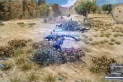 Richiesta di caccia - Aculei nel deserto - Final Fantasy XV