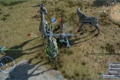Richiesta di caccia - Bellezza selvaggia - Final Fantasy XV
