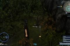 Missione secondaria - Il fiume dei ricordi - Final Fantasy XV
