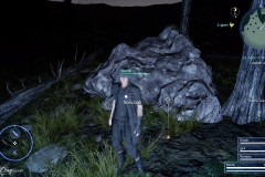 La signora di Malmalam - Final Fantasy XV