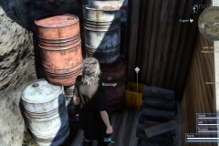 Gli indizi del mistero 12 - Final Fantasy XV