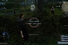 Missione secondaria - Caccia agraria - A volte ritornano - Final Fantasy XV