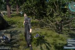 Missione secondaria - Intrappolati nel passato - Final Fantasy XV