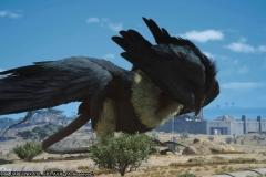 Missione di Randolph - Una nuova leggenda - Final Fantasy XV
