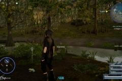 Le rane della leggenda - Final Fantasy XV