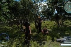Missione - Quando c'è la solitudine - Final Fantasy XV