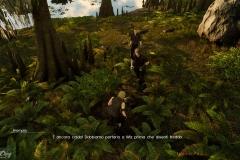 Qui protezione animali - Final Fantasy XV