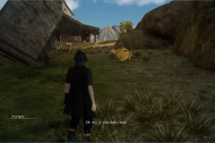 Missione di Wiz - Un Chocobo da salvare - Final Fantasy XV